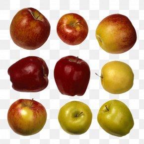 Nine Apples - Apple Juicing Fruit PNG