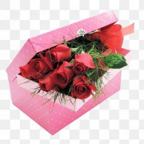 Rose - Garden Roses Floral Design Cut Flowers Flower Bouquet PNG