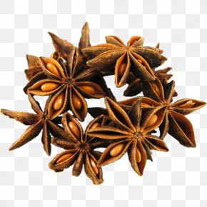 Aniseed - Star Anise Spice Chinese Cuisine Mulled Wine PNG