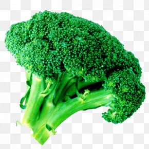 Fresh And Healthy Broccoli - Romanesco Broccoli Cauliflower Cabbage PNG