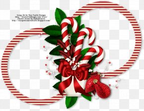 Christmas - Christmas Ornament Candy Cane Floral Design Cut Flowers PNG