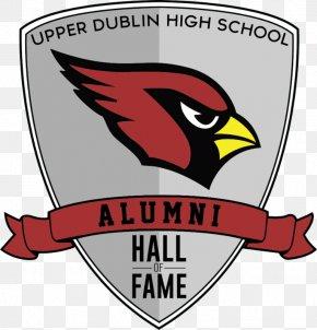 Dublin Jerome High School - Arizona Cardinals St. Louis Cardinals Upper Dublin High School Northern Cardinal PNG