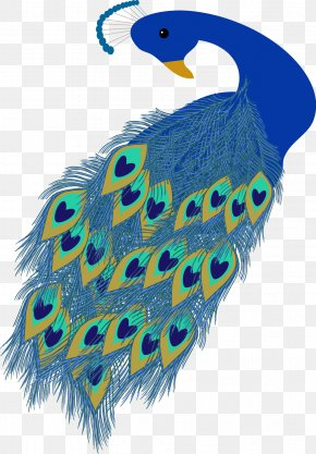 Vector Hand-painted Peacock - Wedding Invitation Peafowl Mothers Day Clip Art PNG