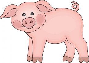 Pig Cartoon Vinales - Vietnamese Pot-bellied Large White Pig Drawing Clip Art PNG