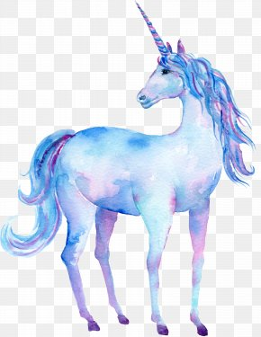Hand Drawn Unicorn Decorations - Unicorn Watercolor Painting Art Poster PNG