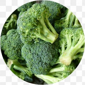 Broccoli - Broccoli Vegetable Food Nutrition Facts Label Health PNG