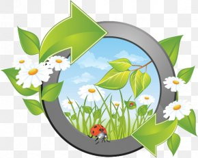 Naturalists - Vector Graphics Royalty-free Illustration Stock Photography Clip Art PNG