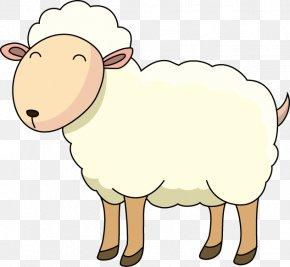 Sheep - Sheep Goat Cattle Clip Art PNG