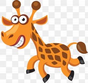 Giraffe - Giraffe Tiger Cartoon Clip Art PNG