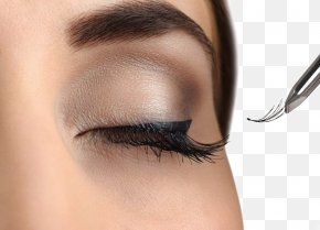Long Eyelashes Woman - Eyelash Extensions Artificial Hair Integrations Cosmetics Hairstyle PNG
