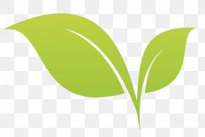 Leaf - Leaf Desktop Wallpaper Plant Stem Tree PNG