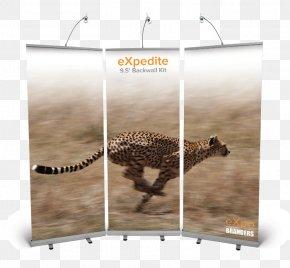 Cheetah - Cheetah Leopard Jaguar Cat Cougar PNG
