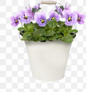 Flower - Flower Pansy Clip Art PNG