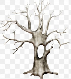 Tree - Tree Branch Snow Clip Art PNG