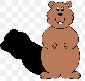 Bear Shadow Cliparts - The Groundhog Groundhog Day Clip Art PNG