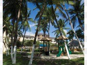 Beach - Divi Southwinds Beach Resort Hotel PNG