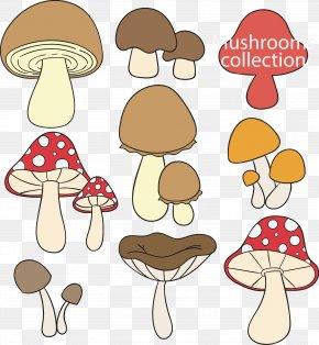 Vector Hand-drawn Cartoon Mushroom Fungus - Edible Mushroom Fungus Drawing PNG