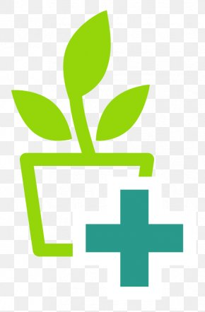 Leaf - Leaf Logo Plant Stem Plants Carnation PNG