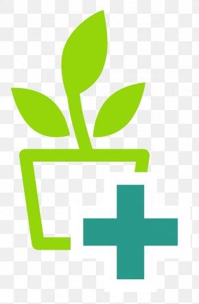 Leaf - Leaf Logo Plant Stem Plants Carnation PNG