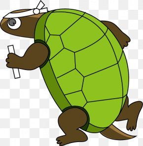 Turtle Run - Turtle The Tortoise And The Hare Clip Art PNG