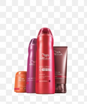 Back Care - Wella Beauty Parlour Hairdresser Hair Care PNG