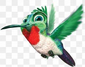 Hummingbird Free Image - Google Hummingbird Clip Art PNG