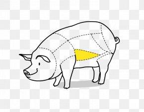 Pig - Pig Galbijib Drawing Clip Art PNG