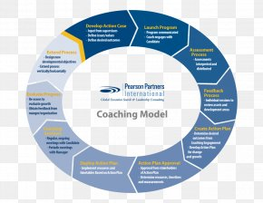 Organization Chart - Coaching Leadership Business Senior Management Executive Search PNG