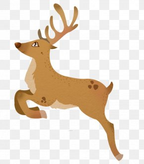 Cartoon reindeer clipart free stock photo public domain pictures image  #11019