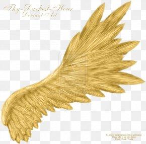 Angel Wings - Angel Wings Clip Art PNG