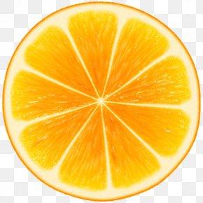 Orange - Orange Watercolor Painting Drawing Fruit France Télécom PNG