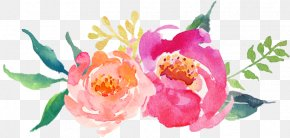 Lent Clip Art Download - Watercolor Painting Peony Clip Art PNG
