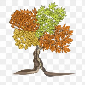 Autumn Tree - Tree Clip Art PNG