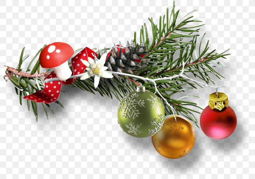 Christmas Day Image Design JPEG, PNG, 800x576px, Christmas Day, Branch, Christmas, Christmas Decoration, Christmas Ornament Download Free