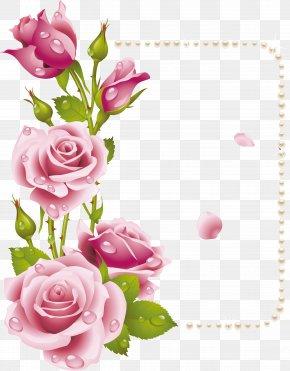 50 - Rose Flower Picture Frames Pink Clip Art PNG
