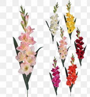 Gladiolus Transparent Background - Gladiolus Artificial Flower Floristry PNG