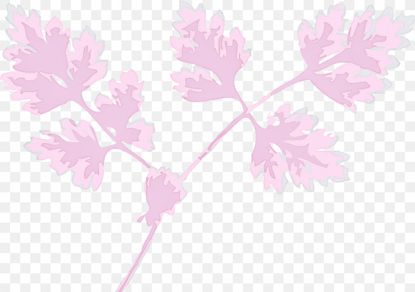 Pink Flower Leaf Plant Branch, PNG, 1280x901px, Pink, Branch, Flower, Leaf, Pedicel Download Free
