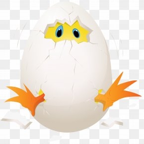 Easter Chicken In Egg Clip Art Image - Chicken Eggs Benedict Clip Art PNG
