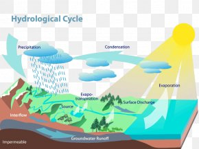 Water Cycle - Water Resources Water Cycle Hydrology Evaporation PNG