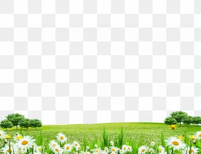 Flowers World - Computer File PNG