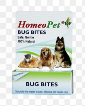 Mosquito Bite - Dog Insect Bites And Stings Animal Bite Cat Allergy PNG