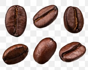Cocoa Beans - Coffee Bean Tea Cafe PNG