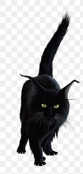 Black Cat - Black Cat Kitten Clip Art PNG