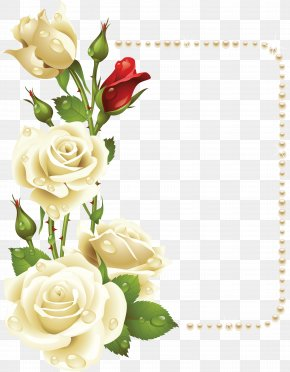 White Rose - Borders And Frames Rose Flower Painting Clip Art PNG