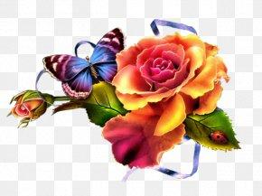 Flower - Cut Flowers Floral Design Clip Art Garden Roses PNG