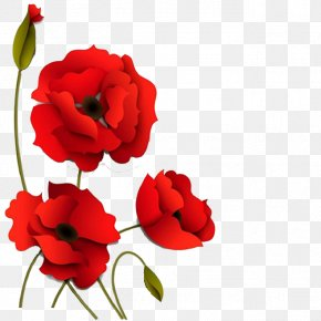 Three-dimensional Red Flowers - Poppy Flowers Paper PNG