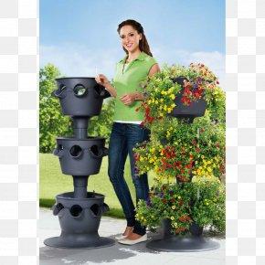 House Garden - Flowerpot Crock Cachepot Color PNG