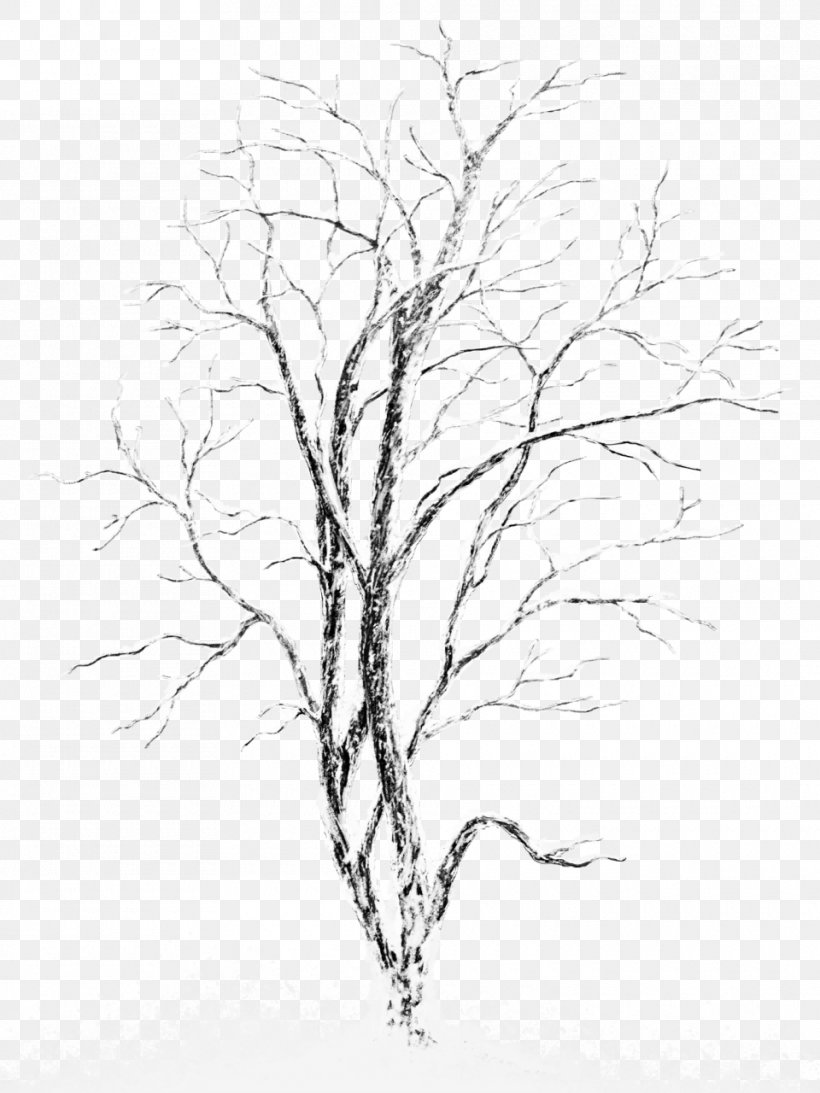 Snow Tree Stock Photography, PNG, 960x1280px, Tree, Artwork, Black And White, Branch, Christmas Download Free