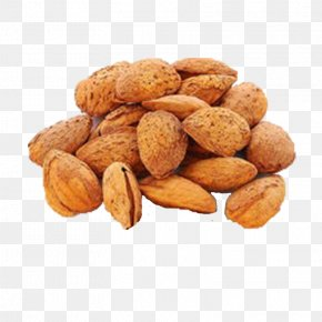 Almond Butter Sweet Almond Shell - Apricot Kernel Almond Food Peel Candied Fruit PNG