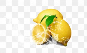 Lemonade Flowers - Juice Tea Soft Drink Lemon PNG
